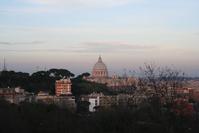 Saint Peter's View