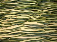 wall of peas