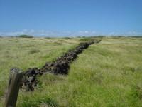 great wall of hawaii