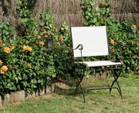 chair lawn