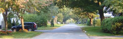 Nice Homes & Streets 2