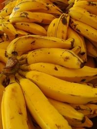 Banana Prata 4