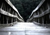 The Brandywine bridge
