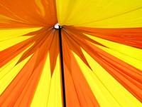 Under Canopies