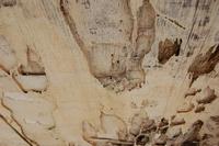 Wood Textures 2 1