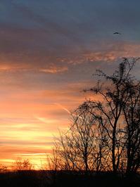 December sunrise_4