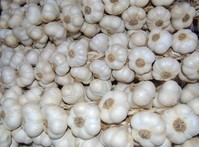 strings of garlic