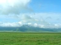 green tanzania