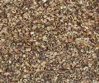 Seed Carpet