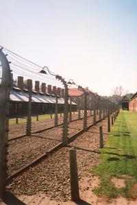 Outer Perimter - Auschwitz 1