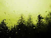 rainy day 2