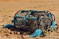 Abandoned Lobster Creel