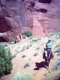 Cowboy on a Ride
