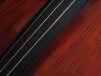 Cello Detail 4