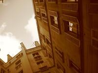 Street of paris 8