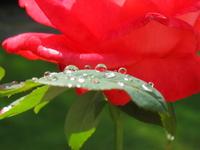 raining again... 1