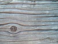 Telephone Pole Detail