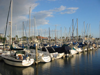 Sailboats near LA
