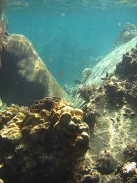Underwater Love 5