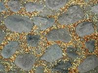 little flowers on cobblestones
