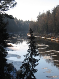 Gauja river in Latvia cold autumn time