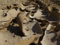 Dry Ground 2