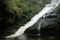 Dingman Falls 1