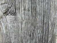 Oak column