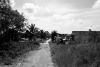 Cuban Streetview 5
