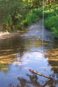 Swinging Over Water