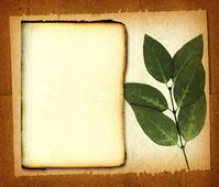 Leaf Paper 2