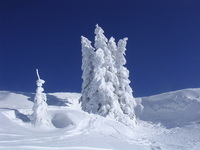 Winter 2006, Switzerland
