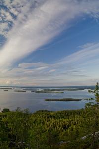 Koli national landscape 1
