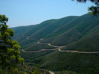 macadam in greek forest
