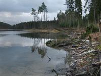 Lake in Pomerania