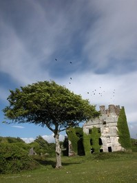 Menlo Castle 2