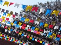 june parties flags