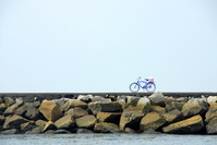 Lone Bike along the water