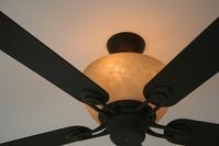 Fan Light 1