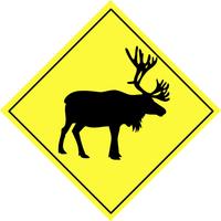 Warning sign - animal 4