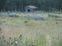 Old barn in Lappland