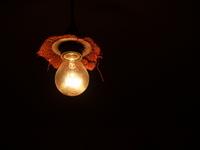 bulb light 2