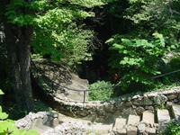 Stone Forest Walkway
