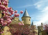 Castle in Spring 1