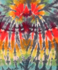 Tie Dye Rainbow Spider Fold