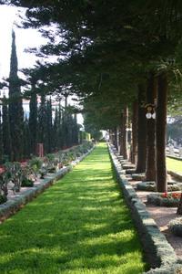 Bahai garden 7