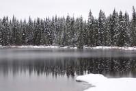 Winter Reflection 2