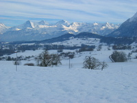 Winterlandscape 12