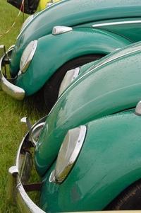 green-dub