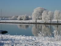 Rijn in the snow